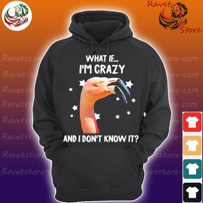 Flamingo what If I'm crazy and I don't know it s Hoodie