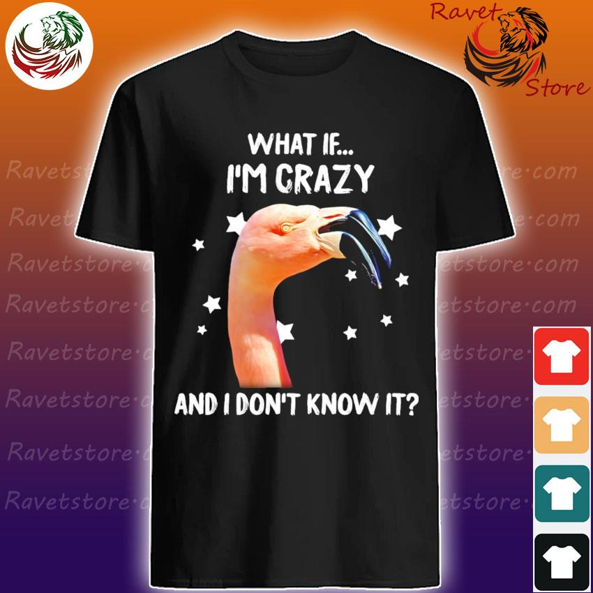 Flamingo what If I'm crazy and I don't know it shirt